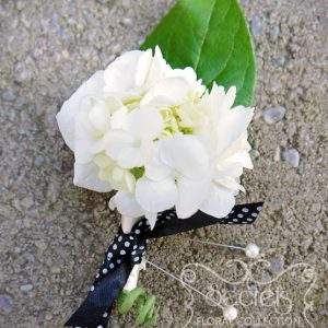 Fresh cream hydrangea boutonniere, with ivory wrap and embellished with black and white polka-dot ribbon - Toronto Wedding Flowers Created by Secrets Floral Collection