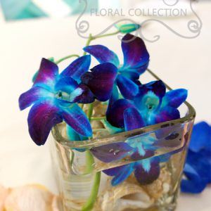 Close-up of head table arrangement made with blue dendrobium orchid and seashells
