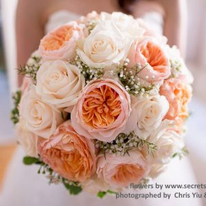 Fresh peach garden roses (David Austin Juliet and Campanella), cream roses, white wax flower, and baby's breath bridal bouquet - Toronto Wedding Flowers by Secrets Floral Collection